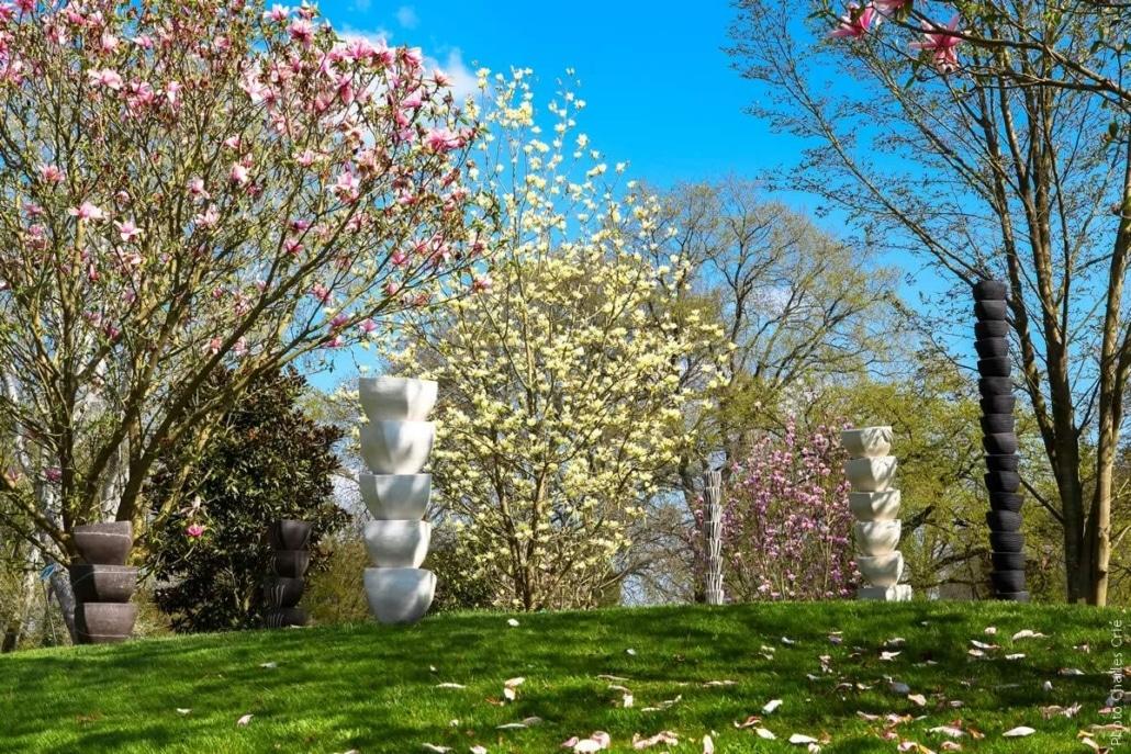 Plantes Dada & Arbres Timides - Martine Hardy - Jardin des Arts 2013