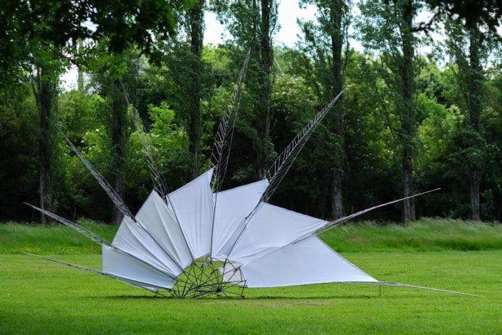 Aile et plume par Alice MORLON - Jardin des Arts 2021