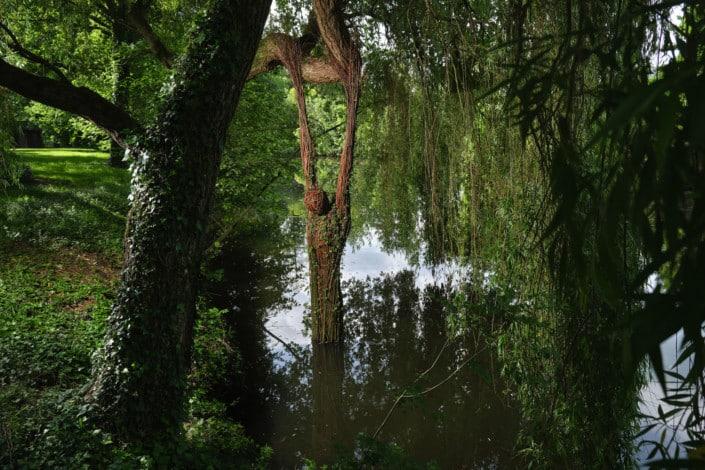 Oeuvres de Sophie PRESTIGIACOMO & Régis POISSON - Jardin des Arts 2021
